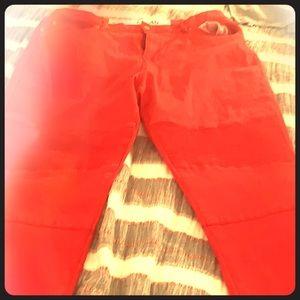 Denim - Designer jeans